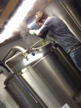 Magnum hop going into Brew Foundation beer